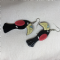 Erstwilder Australia Limited Edition Toucan Drop Earrings  - New in Box  Bird Earrings (Sold)